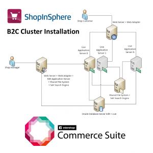 b2c_cluster
